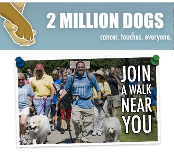 2 Million Dogs Canine Cancer Seattle Event