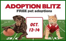 Seattle Humane Free Adoptions