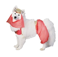 Cute Top Halloween Dog Costumes