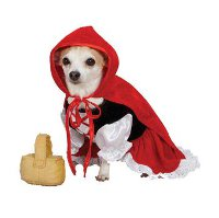 Top Halloween Costumes for Dogs