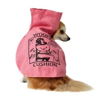 Top Cute Halloween Dog Costumes
