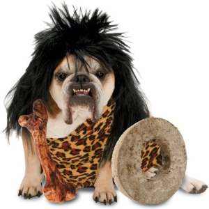 Cute Halloween Dog Costumes